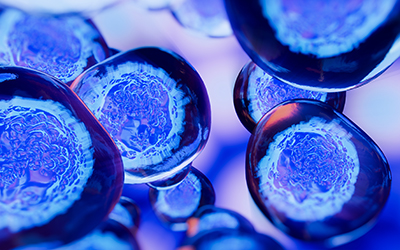 Creative image of embryonic stem cells, cellular therapy. 3d ill