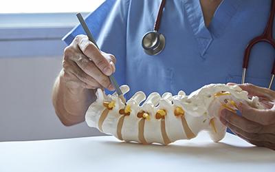 A neurosurgeon pointing at lumbar vertebra model in medical off